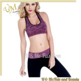 Low Price Ladies Sports Bra Tops Fitness Yoga Suit Sportwear