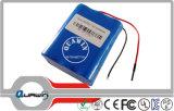 2s3p 7.4V 6600mAh Lithium Battery Pack