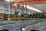 Q345 Low Alloy Steel Wire Rod for High Building/Bridge