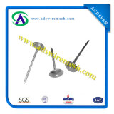 Wire Nails & Umbrella Head Roofing Nails
