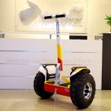 Cruiser Bicycle Wheelssegway Wind Rover V5+ off Road Motor Vehicle