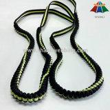 New Product, Jacquard Elastic Nylon Webbing Dog Leash