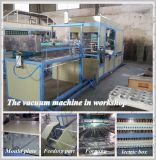 Plastic Tray/Container/Bowl/Lunch Box Vacuum Forming Machine