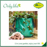 Onlylife Made of Growth Friendly Felt Ecofriendly Reusable Vegetable Bag