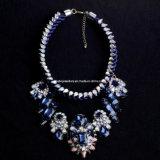 Shourouk Style Fashion Necklace/Fashion Jewelry (XJW13186)