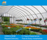 Commercial Polycarbonate Greenhouse for Agriculture and Farming