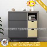 Modern Wooden Office Filing Cabinet /Storage Cabinet / Bookcase (HX-8ND9236)