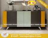 Fashion Book Shelf Furniture Multifunctional File Cabinet (HX-8ND9430)
