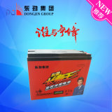 6-Dzm-30 (12V30AH) Deep Cycle Battery/Electric Vehicle Battery for E-Bike Battery