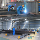 Sandwich Wall Panels Steel Structure Warehouse (PTW)