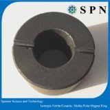 Permanent Ferrite Isotropic Multipole Rings for Stepping Motor
