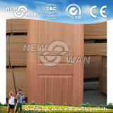 HDF/MDF Veneer Moled Door/Interior Door (NTE-HD5001)