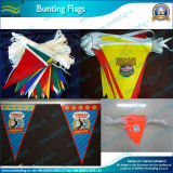 PE Material Bunting Flags (B-NF11P02014)