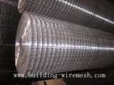Galvanised Welded Wire Mesh in Anping Supllier