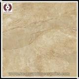 600*600mm New Design Semi Polished Porcelain Tile Floor Tile (MO60CP)