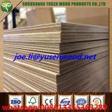 High Gloss Birch Core UV Plywood
