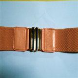 New Stytle Fashion Elastic Belt for Lady (HJ0268)