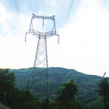 220 Kv Single Circuit Cat-Head Type Angle Steel Tower