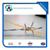 Common Twist 15ga. Barbed Wire, Barbed Wire Mesh