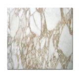 Direct Factory Calacatta Gold Marble, Calacatta White Marble