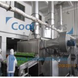 Green Pepper Processing Machine Drying Pepper Dehydrator, Pepper Drying Machine