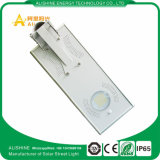 15W 1500-1650lm Ce/EMC/RoHS LED Solar Street Light