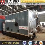 Szl Series Biomass Fired Steam Boiler for Industrial Food Factory