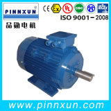 Y2 Series Three Phase Motor for Pump