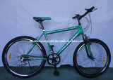 Green Color MTB with Best Price (SH-MTB209)