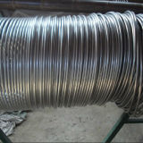 304L Seamless Stainless Steel Coiled Tube