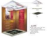 Passenger Lift Passenger Elevator for Home (LL-014)