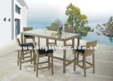 Rattan Furniture - Bar Chair and Table (BG-N010A)