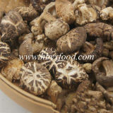 Best Selling Products, Organic Food, Healthy Food, Dried Tea Flower Shiitake Mushroom