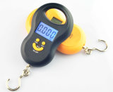 Hook Backlight Luggage Portable Scale (XF -A03L)