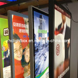 Hanging Crystal Light Box LED Window Display Real Estate Window Show