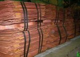 Grade a Copper Cathode (99.95- 99.99 %)
