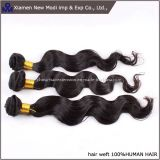 Human Remy Hair Weft with Hight Quality