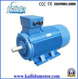 Y2/Y3 Series Three Phase AC Electric Big Motor (y2-355L2-2POLE) Ce UL