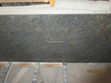 Blue Butterfly Granite Countertop for Kitchen (vanity top)