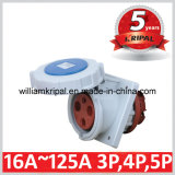 IP67 16A 2p+E Cee Panel Socket Outlet