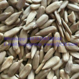 New Crop Lady Nail Sunflower Seeds Kernel