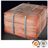 Copper Cathodes 99.99% Purity in Copper / Copper Scrap for Sale