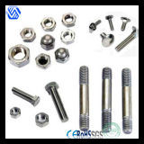 Stainless Steel Fastener Bolt and Nut
