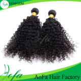 100% Kinky Curly Virgin Brazilian Huaman Hair Weaving