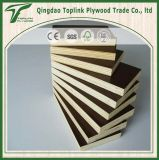 12mm 11mm Poplar Shuttering Film Faced Plywood for Construction From Factory