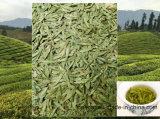 Best Selling Long Jin Tea