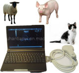 10inch Ultra-Thin Human and Vet Portable Ultrasound System