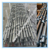 Ce Qualified Cuplock Scaffolding for Construction.