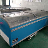 Made in China Build in Compressor Deep Freezer Refrigerator Showcase