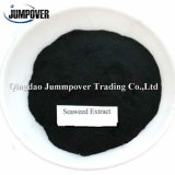 Competetive Price Seaweed Extract for Plant